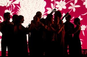 http://oferplan-imagenes.lasprovincias.es/sized/images/ballet-flamenco-teatro-principal-300x196.jpg