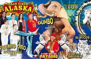 Gran Circo Alaska adulto + niño por 14€