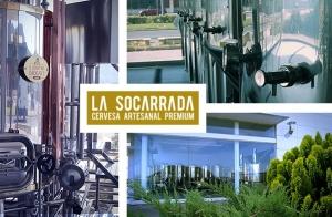http://oferplan-imagenes.lasprovincias.es/sized/images/visita-cata-socarrada-xativa-1-300x196.jpg